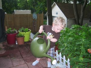 Gardening with Andrew 004