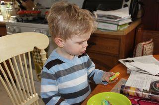 Rainbow cupcakes taste tester