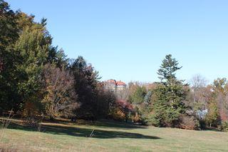 Morris Arbortetum in fall 069