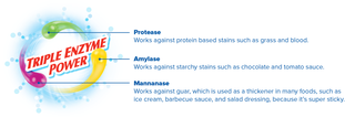 Triple-enzyme-graphic