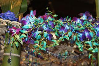 Flower Show 2012 055