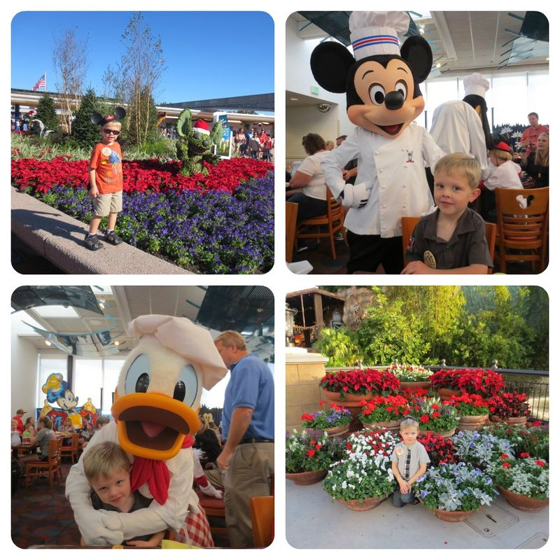 Disney andrew collage
