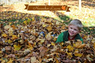 Leaf pile andrew