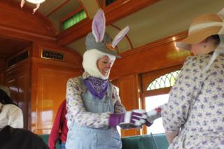 Bunny engineer