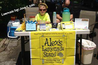 Lemonade Stand 2013