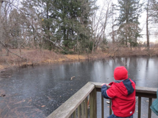 Pond at Pennypack Preserve