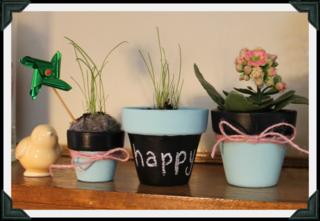 Flower pots close up