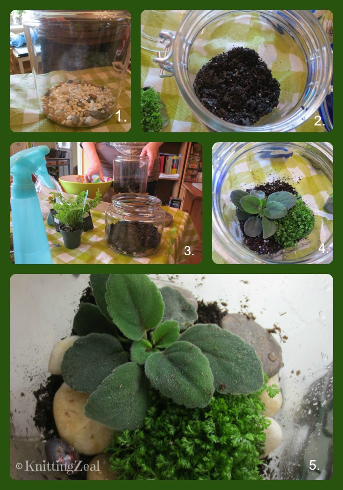 Terrarium Collage