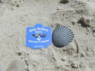 beach tag