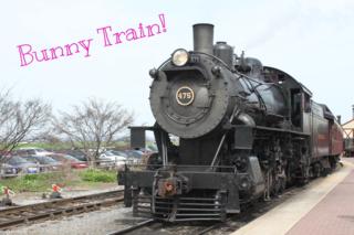 Strasburg RR bunny train